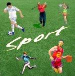 Prato sintetico sportivo